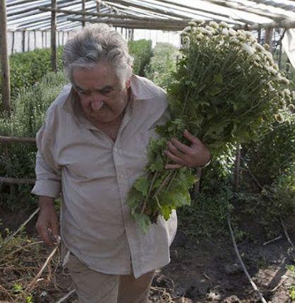 http://worldmeets.us/images/Jose-Mujica-farming_pic.jpg