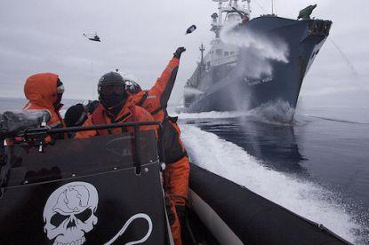http://worldmeets.us/images/sea-shepard-whalers_pic.jpg