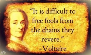 http://worldmeets.us/images/voltaire-folls_quote.jpg