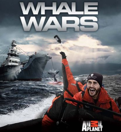 http://worldmeets.us/images/whale-wars_pic.jpg